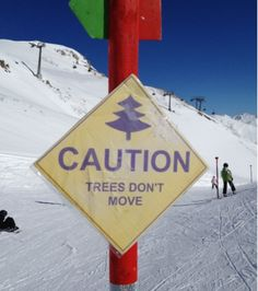 Caution Trees Don't Move