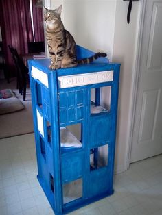 Cat TARDIS - Jad Bean...This is pretty cool for all of my Dr. Who fan friends!!!!