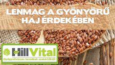 Nagyszerű hatásokkal rendelkezik a lenmag! 😉 - HillVital Beans, Vegetables, Food, Vegetable Recipes, Eten, Veggie Food, Prayers, Meals, Beans Recipes