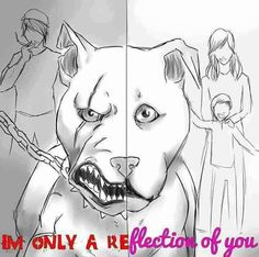 unholy-annihilation: I am only a reflection of you. breeds pet puppy dog breeds nose pitbull terrier terrier terrier pitbull moo pit pitbull poodle nosed pit mutt best friend month old pitbull Pitbull Terrier, Dogs Pitbull, Bull Terriers, Baby Pitbulls, Black Pitbull, Boston Terrier, Breed Specific Legislation, Dog Shaming, Pit Bull Love