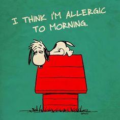 I think I'm allegic to morning.