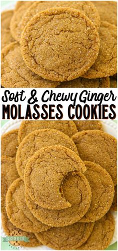 Soft chewy ginger molasses cookies are perfect for the holidays! lovely combination of spices give these molasses cookies incredible flavor and texture ginger molasses cookies baking fall holidays dessert recipe from family cookie recipes brownie cookie Low Carb Cookies, Spice Cookies, Yummy Cookies, Sugar Cookies, Baking Cookies, Cookies Soft, Fruit Cookies, Cream Cookies, Fall Cookies