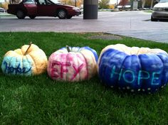 Breast cancer awareness pumpkins to support the Especially for You Race Against Breast Cancer Especially For You, Breast Cancer Awareness, Pumpkins, Pumpkin, Squash