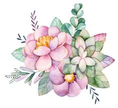 Art Floral, Floral Drawing, Easy Watercolor, Watercolour Painting, Watercolor Flowers, 3 Canvas Paintings, Nature Drawing, Cactus Art, Art Graphique