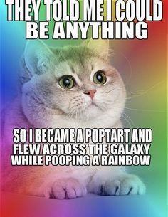 nyan cat!! funnnnny-d