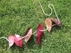 Children can go out and pick their leaves.  Once they come back they could be given a stick to poke holes the leaves for whatever they are making (bracelet, anklet, head band, decoration) Children will have to focus to thread the leaves.