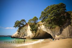 Take a Road Trip around New Zealand's North Island | TerraDrift