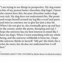 Blythe Baird, Theories about the Universe