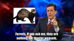 bahaha! I have a hipster weasel!