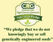 Renee's Garden Seeds Gardening Articles: How to plant and grow a garden from seed, kitchen garden ideas and technique tips