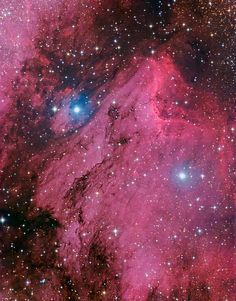 Pelican Nebula- IC 5070 at Billions and Billions.com. An H II region associated with the No. American Nebula in the constellation Cygnus