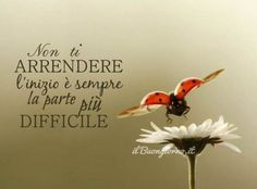 Be Different.it Non ti arrendere.fatti aiutare da Larch e Gentian Italian Quotes, Motivational Stories, Take Me Up, True Stories, Cool Words, Quote Of The Day, Life Lessons, Favorite Quotes, My Books