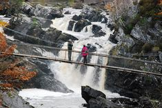The falls of Rogie are a series of waterfalls on the Black Water River in Ross-shire, Scotland.  The falls are located about 2 km north-West of the village of Contin. The bridge will support a maximum of five persons at one time, with a narrow and sharp set of steps at its end.  Photo: walkhighlands.co.uk