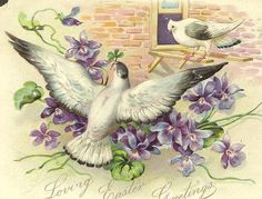 Pair of White Doves and Spring Violets on Vintage Tuck Easter Card  #2014 #Easter #Day #card #decor #craft #ideas www.loveitsomuch.com