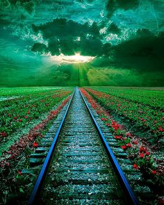 Sexy Sensual & The Beauty Of Everything! — Train rails at sunset, Romania Pretty Pictures, Cool Photos, Beautiful World, Beautiful Places, Trains, Magic Places, Photo D Art, All Nature, Train Tracks