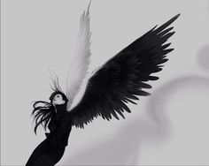 Woman with black & white wings art