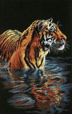 Create a beautiful work of art with this tiger cross stitch kit. This Dimensions cross stitch kit contains everything you need to create a stunning scene featuring a lovely tiger standing in a pool of Learn Embroidery, Cross Stitch Embroidery, Embroidery Patterns, Cross Stitch Patterns, Cross Stitching, Dimensions Cross Stitch, Dragon Cross Stitch, Dragon Pictures, Japanese Embroidery