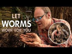 Get Worms to Work For You in your Vegetable Garden! - YouTube Farm Pictures, Garden Pictures, Save Our Earth, Veg Garden, Vegetable Gardening, Garden Planner, Starting A Garden, Earthworms, Grow Your Own Food