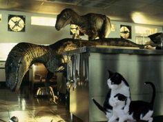 Jurassic Park cats!