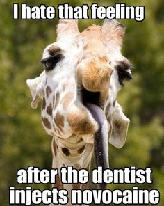 Lol! Don't we know it! #BrightsideDentalcare