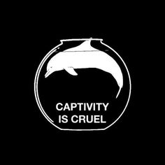 Don't go to Marine Land, Sea World, etc. Without your money they will stop captivity.