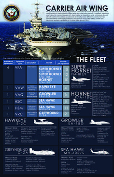 An infographic depicting the composition of an aircraft carrier strike group. Us Navy Aircraft, Navy Aircraft Carrier, Military Aircraft, Carrier Strike Group, Navy Carriers, Go Navy, Us Navy Ships, Navy Military, Military Weapons