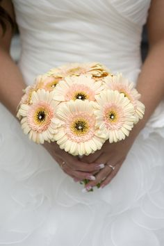 Gerber Daisy Wedding Bouquet...LOVE the color of these, would add a touch of color with other flowers here and there
