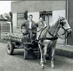 Budapest, Hungary, Old Photos, Farming, Horses, Technology, Animals, Beautiful, Wood