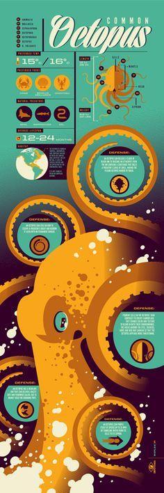 Infographic - Storage10 #data #datavisualization ...