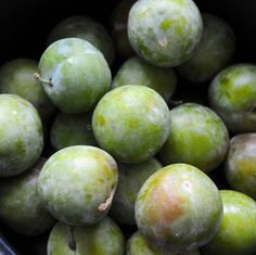 Greengage sorbet anyone? Coat washed greengages in sugar – golden caster sugar used as it was to hand, leave stones in situ and coat about 20 ripening and washed greengages whilst they were s… Plum Ice Cream, Sorbet Ice Cream, Rainbow Food, Good Enough To Eat, Fruit And Veg, Healthy Cooking, Fall Recipes, Magazine