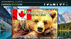 """Progress on the #Canada #Eco site Canada Eco.Com """"Canada Make It Happen!"""" , Now to find some great content?🎯🌳♻️⚖️💚💲👍🤔🐻🇨🇦 #THENEWECONOMY Sustainable Tourism, Make It Happen, Sustainability, Content, Shit Happens, Sustainable Development"""