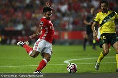 Benfica Stuff (@Benficastuff) | Twitter