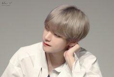 Love U Tae àh