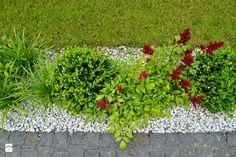 Nowoczesny, elegancki ogród. - Ogród, styl minimalistyczny - zdjęcie od PracowniaDabrowska