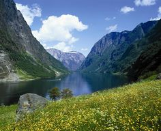 Beautiful Norwegian Fjords   Travel Blog Direction & Places to Visit