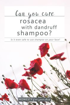 There's a lot of internet chatter about rosacea and dandruff shampoo. Is this legit? Does it work? Should you even use shampoo on your face? Rosacea Causes, Dandruff Control, Skincare Blog, Does It Work, Oils For Skin, Diy Skin Care, Frases, Cleaning, Home