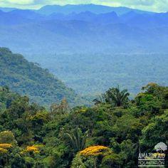 Beautiful Villa Carmen Biological Station in #Peru. #rainforest #andes #biodiversity #amazonia