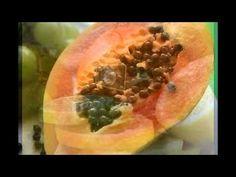 Frutoterapia, Albert Ronald Morales. - YouTube