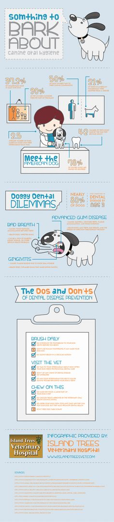Cute infographic on the importance of canine oral hygiene