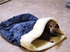 Fall is Here! // Doodlebug Dud's Sleeping Bag For That Pet That Loves To Burrow - Size small (under 12 pounds). $20.00, via Etsy.