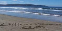 dillons beach   Bodega Bay: Doran Beach to Dillon Beach 6 mile scenic open-ocean ...