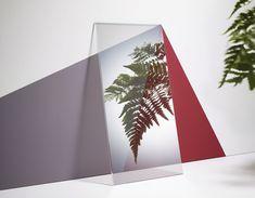 http://www.fubiz.net/2016/07/28/reflections-of-green-plants-in-mirrors/