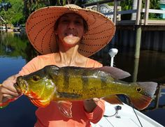 Palm Beach County Fishing charters for snook, sharks, tarpon, peacock bass, largemouths and lots more!!!! Half day trips from $275!!! Peacock Bass, Fishing Charters, Palm Beach County, Sharks, South Florida, Day Trips, Spanish, Pictures, Women