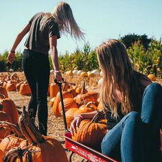 Autumn photography, fall for you, autumn inspiration, fall pics, fall pictu Best Friend Pictures, Bff Pictures, Cute Fall Pictures, Bff Pics, Autumn Photography, Tumblr Photography, Bffs, Bestfriends, Pool Girl