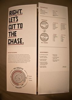 The CV Publication on the Behance Network