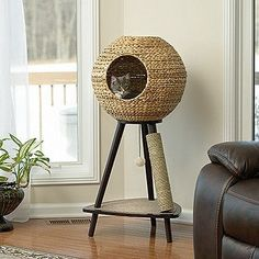 Cat furniture that can keep your cat comfortable and entertained can be hard to find. This cat tower takes care of both of these concerns, with a cozy sphere for them to curl up in to nap as well as a