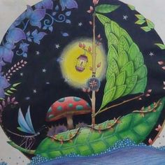 Johanna Basford - Enchanted Forest - leaf boat