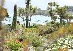 Tresco Island, Isles Of Scilly