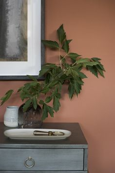 Sherwin-Williams Color of the Year, Cavern Clay - roomfortuesday.com