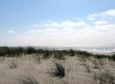 The North Holland coast is the best! I love it there so much.